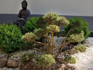 Zen-Garten IV © Mel M.