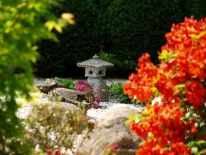 Zen-Garten VI © Mel M.