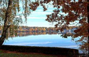 Autumn IV© Mel M.