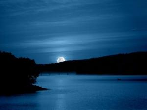 Claire de Lune© Mel M.