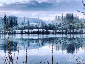 Winterwonderland © Mel M.