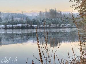 Wintermorning © Mel M.